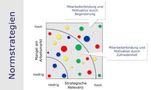 Rollenportfolio, Funktionsportfolio: Inhaber von Schlüsselfunktionen und Engpassfunktionen binden und motivieren (Normstrategien)